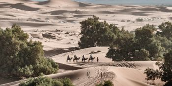 The sandy challenge in the heart of Sahara!
